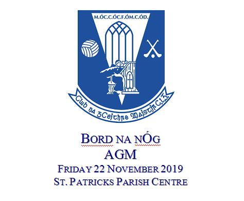 Bord na nÓg AGM and nominations for 2020